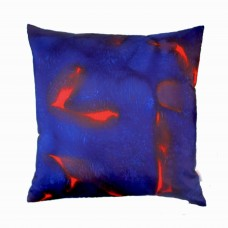 Large Scarlett  square hand painted silk cushion